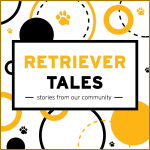 """Black and gold paws and circles surrounding the words """"Retriever Tales: Stories from Our Community""""."""